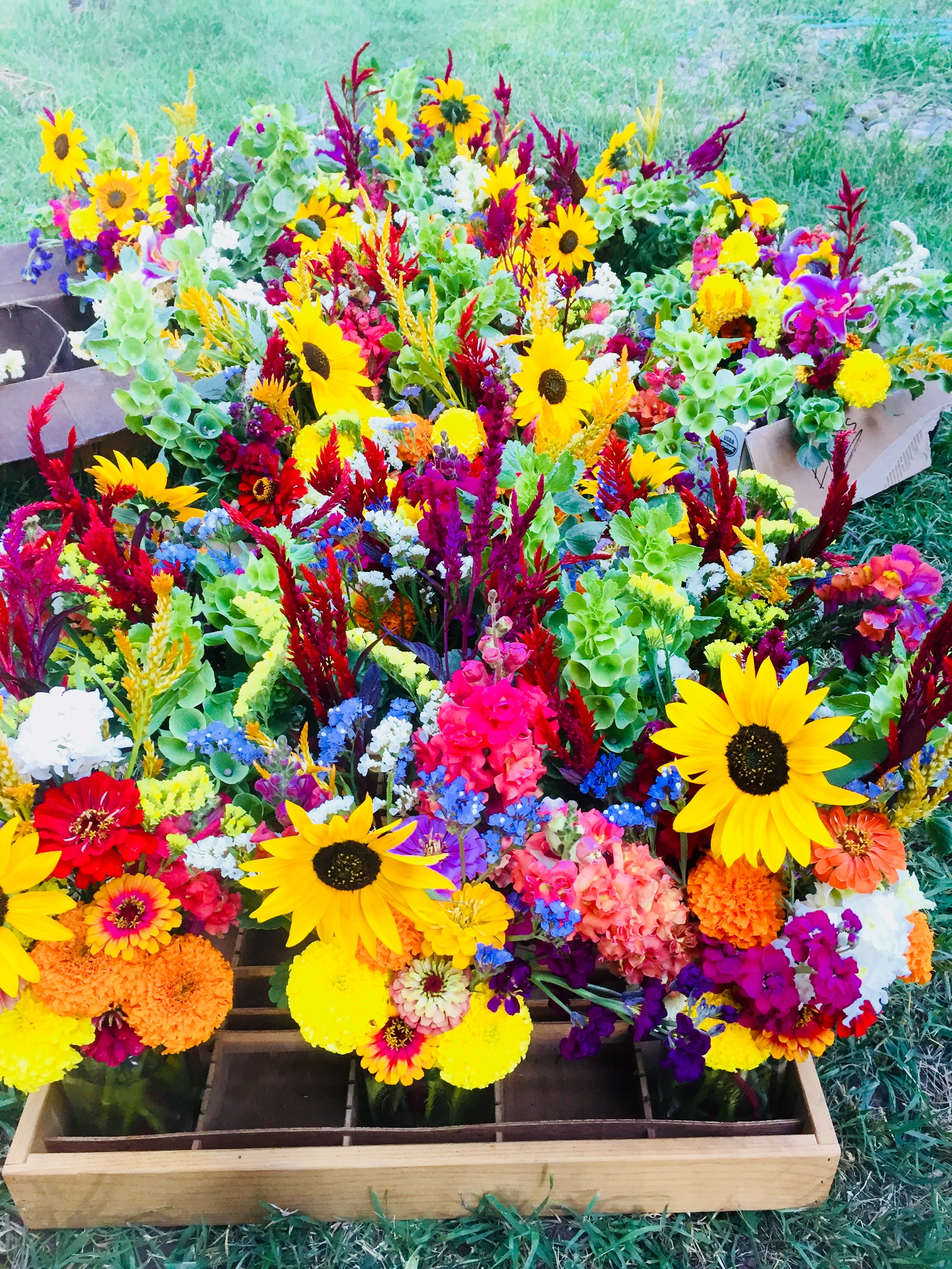 Farmers market bouquets adobe house farm each week at durangos farmers market we sell pre arranged bouquets with all of the best flowers of the season izmirmasajfo